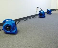 Air Mover Drying Carpet