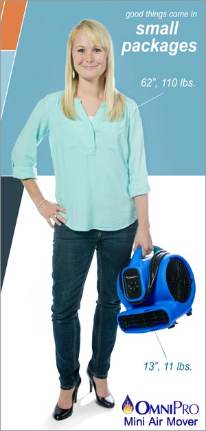 OmniDry Mini Air Mover Machine